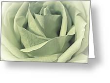 Key Lime Souffle Greeting Card