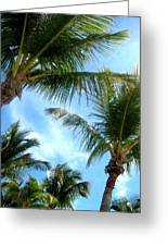 Key West Perspective Of View Greeting Card