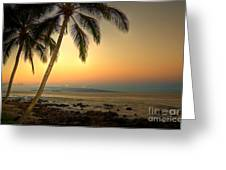 Kihei Palm Sunrise Greeting Card