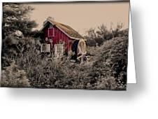 Kimberton Mill  Chester County Pa Greeting Card
