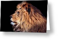 King Of Beast Greeting Card