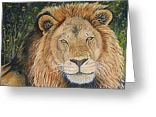 King Of The African Savannah Greeting Card