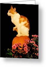 King Of The Pumpkin Greeting Card