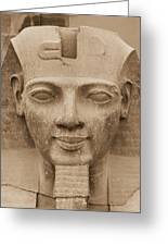 King Ramses II  Greeting Card