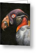 King Vulture - Impasto Greeting Card