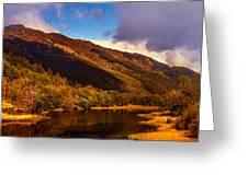 Kingdom Of Nature. Scotland Greeting Card by Jenny Rainbow