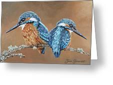 Kingfishers Greeting Card