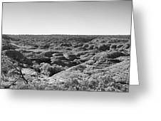 Kings Canyon Black And White Greeting Card