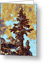 Kings River Canyon Colorized Greeting Card