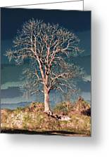 King's Tree Greeting Card