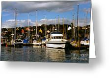Kinsale Yacht Club Greeting Card