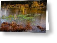 Kintbury Newt Ponds Greeting Card
