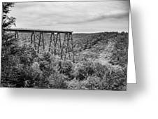 Kinzua Viaduct 6911 Greeting Card