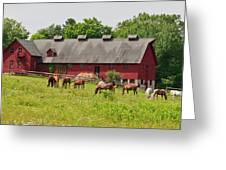 Kirtland Hills Farm 0722 Greeting Card