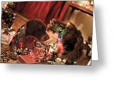 Kiss At Christmas Greeting Card