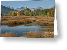 Kiss Of Fall In The Grand Tetons Greeting Card by Sandra Bronstein