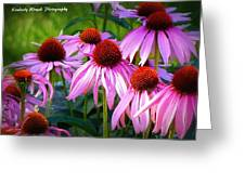 Kissed By Sunlight Greeting Card