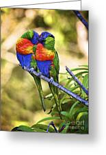 Kissing Rainbow Lorikeets 8 Greeting Card by Heng Tan