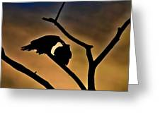 Kissing Ravens Greeting Card