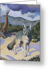 Kit Fox Greeting Card