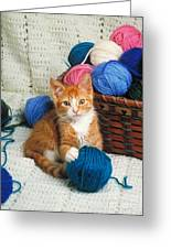 Kitten Playing With Yarn Greeting Card