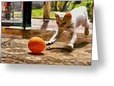 Kitten With Ball Greeting Card