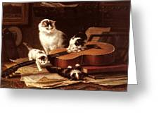 Kittens Playing With A Guitar Greeting Card