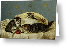 Kittens Up To Mischief Greeting Card