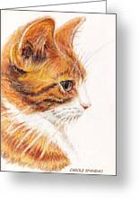Kitty Kat Iphone Cases Smart Phones Cells And Mobile Cases Carole Spandau Cbs Art 338 Greeting Card