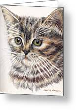 Kitty Kat Iphone Cases Smart Phones Cells And Mobile Cases Carole Spandau Cbs Art 343 Greeting Card
