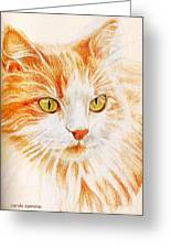 Kitty Kat Iphone Cases Smart Phones Cells And Mobile Cases Carole Spandau Cbs Art 344 Greeting Card