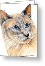 Kitty Kat Iphone Cases Smart Phones Cells And Mobile Cases Carole Spandau Cbs Art 346 Greeting Card