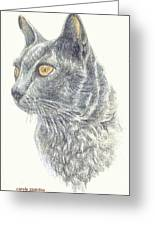 Kitty Kat Iphone Cases Smart Phones Cells And Mobile Cases Carole Spandau Cbs Art 347 Greeting Card