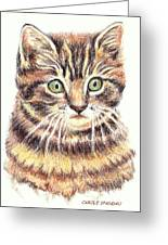 Kitty Kat Iphone Cases Smart Phones Cells And Mobile Cases Carole Spandau Cbs Art 350 Greeting Card