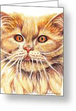 Kitty Kat Iphone Cases Smart Phones Cells And Mobile Cases Carole Spandau Cbs Art 351 Greeting Card