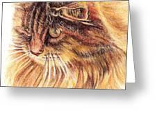 Kitty Kat Iphone Cases Smart Phones Cells And Mobile Cases Carole Spandau Cbs Art 352 Greeting Card