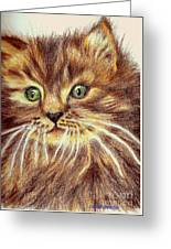 Kitty Kat Iphone Cases Smart Phones Cells And Mobile Phone Cases Carole Spandau 317 Greeting Card