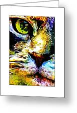 Kitty Nosed Greeting Card
