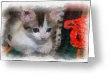 Kitty Photo Art 01 Greeting Card