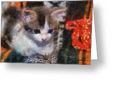 Kitty Photo Art 02 Greeting Card