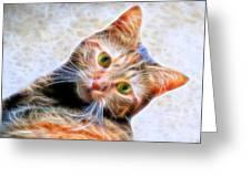 Kitty Strange Greeting Card