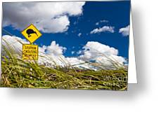 Kiwi Crossing Road Sign In Nz Greeting Card