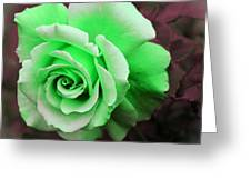 Kiwi Lime Rose Greeting Card