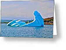 Kneeling Before The Queen Iceberg In Saint Anthony-newfoundland  Greeting Card