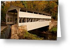 Knox Bridge In Autumn Greeting Card
