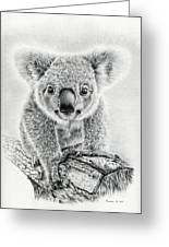 Koala Oxley Twinkles Greeting Card