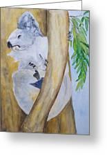 Koala Still Life Greeting Card
