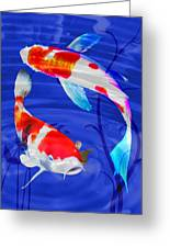 Kohaku Koi In Deep Blue Pool Greeting Card