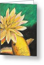 Koi And The Lotus Flower Greeting Card