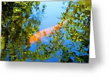 Koi Fish 3 Greeting Card